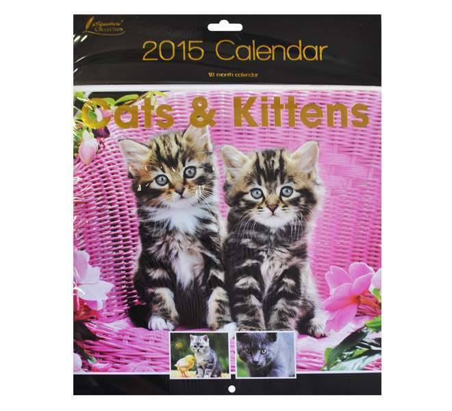 2015 Square Calendar Cats & Kittens