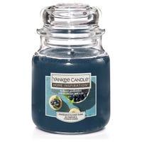Yankee Jar Candle Blueberry Cheesecake 104g