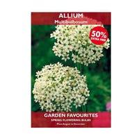 Allium Multibulbosum Bulbs 2 Pack