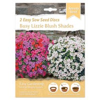 Speedy Seed HB Disc Busy Lizzie