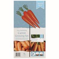 Carrot Vegetable Garden Stake Set