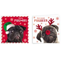 Festive Puppy Christmas Cards 10 Pack