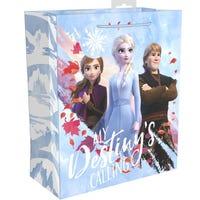 Disney Frozen 2 Gift Bag