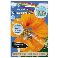 Fairy Garden Flowers Nastutium