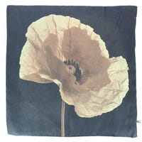 Photochromatic Print Cushion Covers Poppy 2 Pack