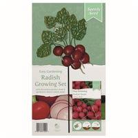 Radish Vegetable Garden Stake Set