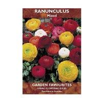 Ranunculus Mixed Bulbs 10 Pack