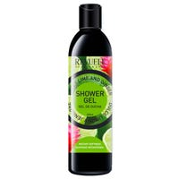 Revuele Sweet Lime and Ginger Shower Gel 500ml
