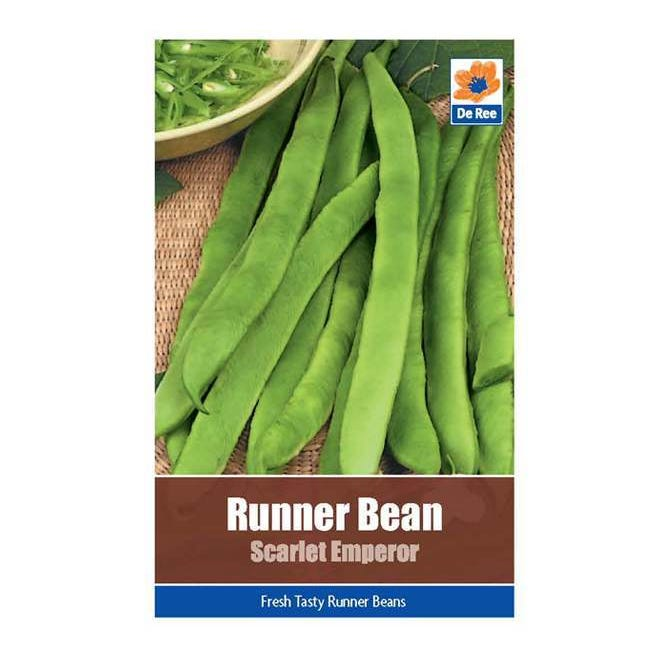 runner bean scarlet emperor seed collection