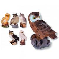 Solar Light Owls Assorted