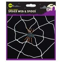 Halloween Spider Web and Spider