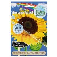 Fairy Garden Flowers Sunflower Giant