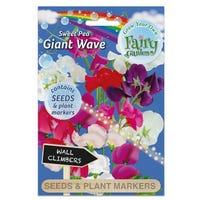 Fairy Garden Flowers Sweet Pea