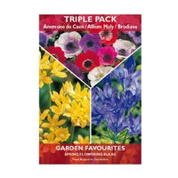 Mixed Anemone/Allium/Brodiaea Bulbs 20 Pack