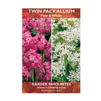 Allium Mixed Pink & White Bulbs 20 Pack